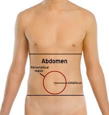 abdominal-hernia-info-02
